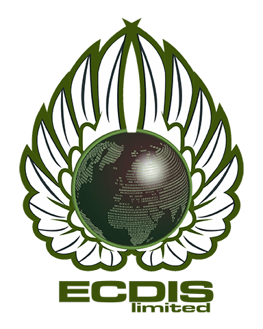 ECDIS Training Courses and Advice